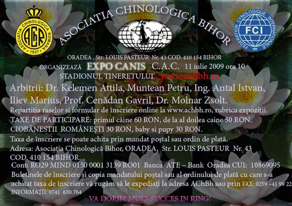 eveniment_caini