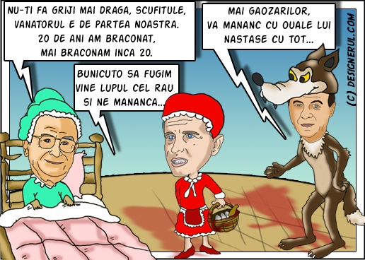 scufita_rosie_electorala