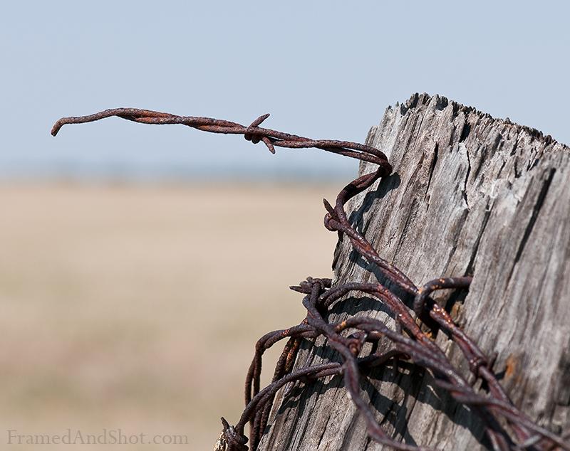 rusty-wire