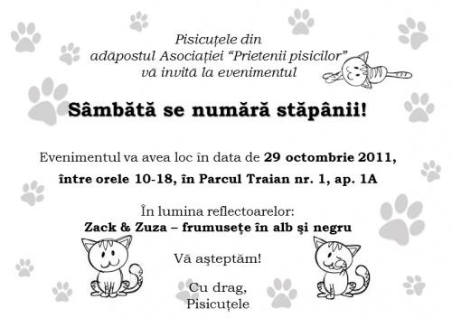 adoptii_pisici