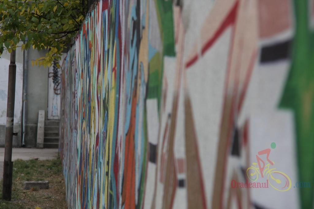 graffiti_eminescu_oradea_21