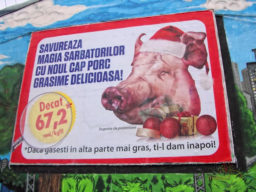 decat_porc_la_romana